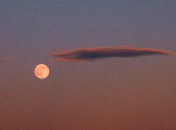 Moon_and_Cloud